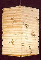 BOTANIC Leaves Petals Hako Lantern
