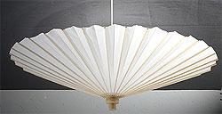 Paper Parasol in Natural